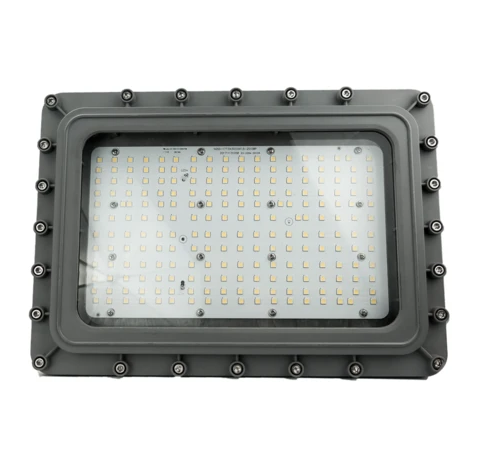 D Series – Hazardous Location Light